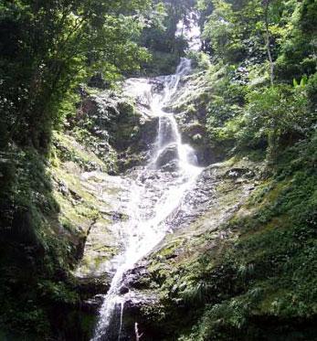 Upper Rincon Falls, Trinidad